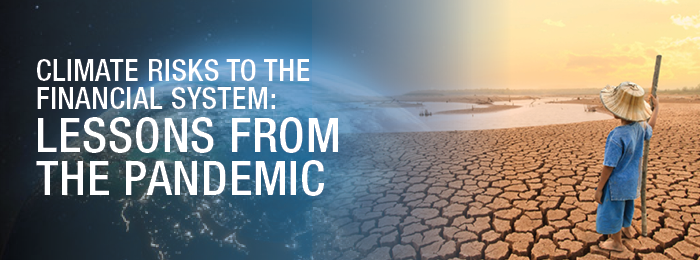 Climate Risks to the Financial System: Lessons from the Pandemic